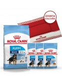 Pack Royal Canin Maxi Puppy - Oferta Cama para cão