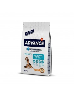 Advance Mother Dog & Initial Advance Affinity Cães