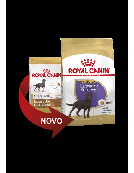 Royal Canin Labrador Sterilised 12kg, Alimento Seco Cão | Cuidados Especiais para Cães | Royal Canin