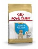 Royal Canin Labrador Puppy, Alimento Seco Cão Royal Canin Alimentação Seca para Cães