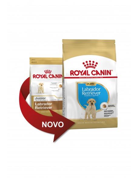Royal Canin Labrador Puppy, Alimento Seco Cão | Ração Seca para Cães | Royal Canin