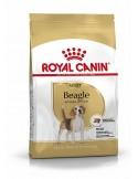Royal Canin Beagle Adult, Alimento Seco Cão Royal Canin Ração Seca para Cães