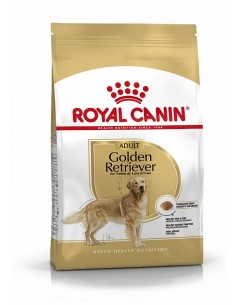 Royal Canin Golden Retriever Adult, Alimento Seco Cão Royal Canin Cães