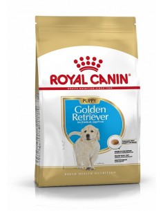 Royal Canin Golden Retriever Puppy, Alimento Seco Cão
