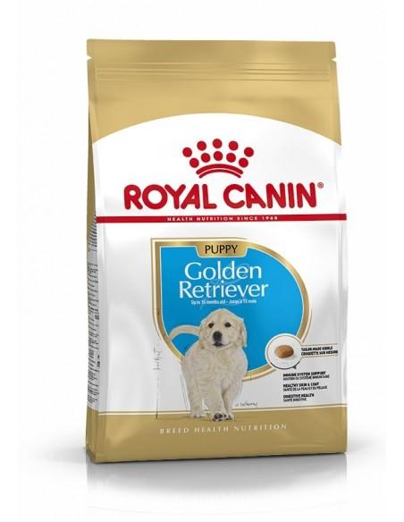 Royal Canin Golden Retriever Puppy, Alimento Seco Cão