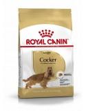 Royal Canin Cocker Adult, Alimento Seco cão Royal Canin Alimentação Seca para Cães