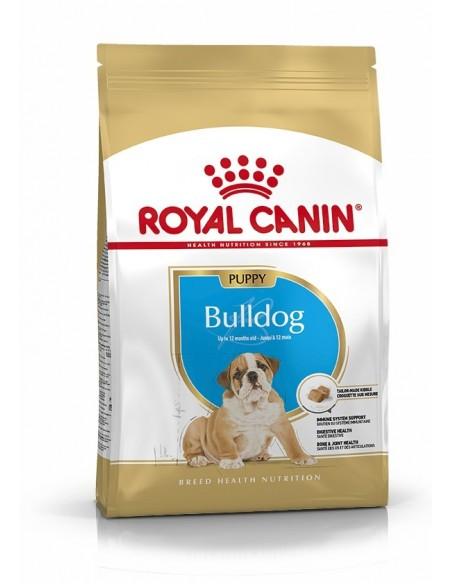 Royal Canin Bulldog Ingles Puppy, Alimento Seco cão