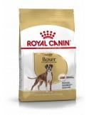 Royal Canin Boxer Adult Alimento Seco Cão Royal Canin Cães