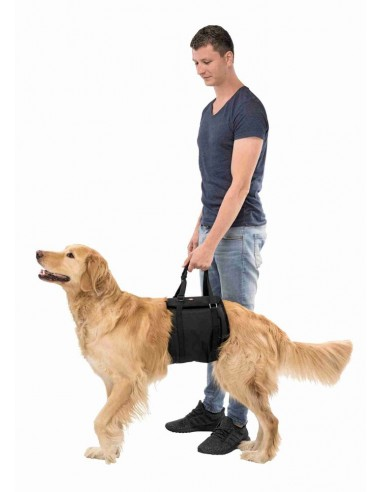 Arnês de reabilitação para cão Trixie Outros Artigos