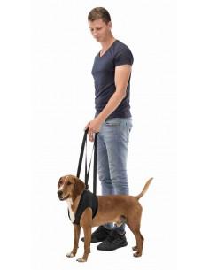 Arnês de reabilitação para cão (Apoio para caminhar) Trixie Outros Artigos