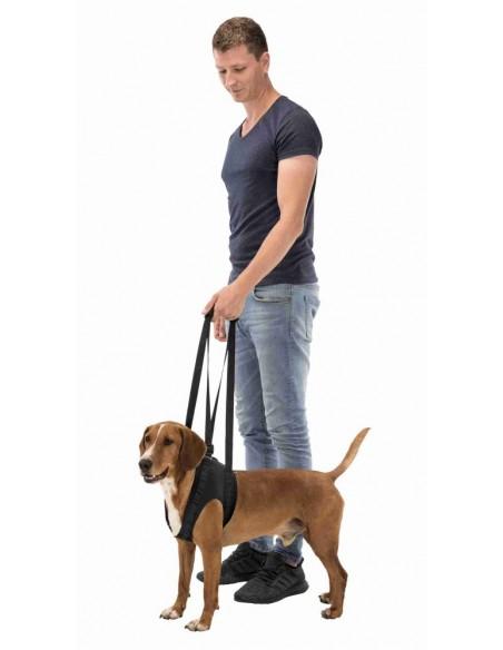 Arnês de reabilitação para cão (Apoio para caminhar) | Outros Artigos | Trixie