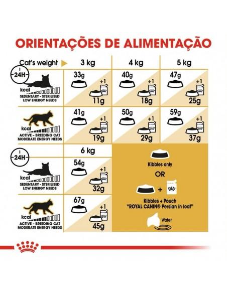 Royal Canin Persa Adulto Gato, Alimento Seco | Gatos | Royal Canin