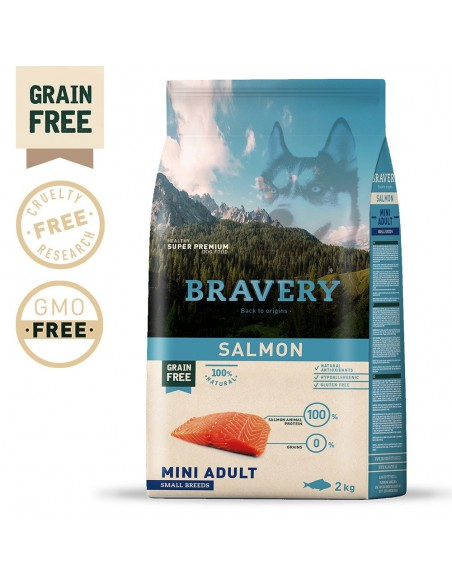 Bravery Salmon Mini Adult Small 2 Kg