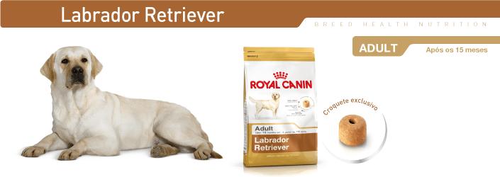 royal canin labrador. Black Bedroom Furniture Sets. Home Design Ideas