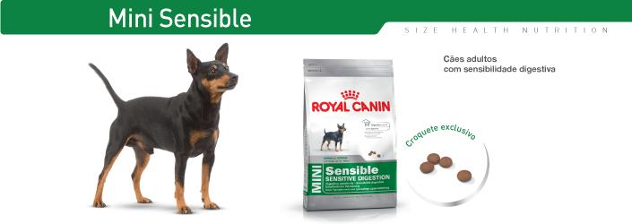 Relativ Ração para cães Royal Canin Mini Digestive Care, Alimento Seco Cão XO49